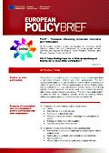 PIDOP Policy Briefing Paper No. 4