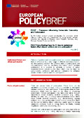 PIDOP Policy Briefing Paper No. 5