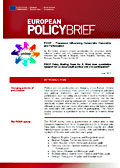PIDOP Policy Briefing Paper No. 6